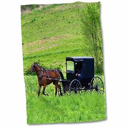 3D Rose Amish Farm with Horse Buggy Near Berlin-Ohio-Us36 Df