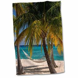 3dRose Danita Delimont - Islands - Palm trees and hammock al