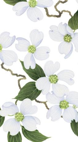 Caspari - Disposable Folded Bathroom Hand Towel, White Bloss