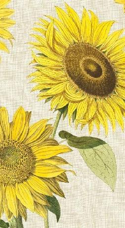 Hand Towels or Paper Guest Towels Sunflower Under the Sun 30