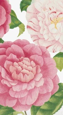 Hand Towels or Paper Towels Party Supplies Camellias Pk 15